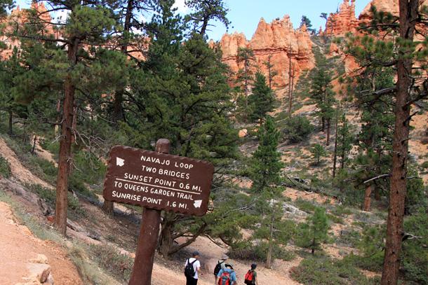 Szlak w Bryce Canyon
