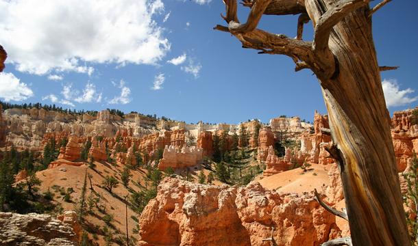 Bryce-Canyon_5
