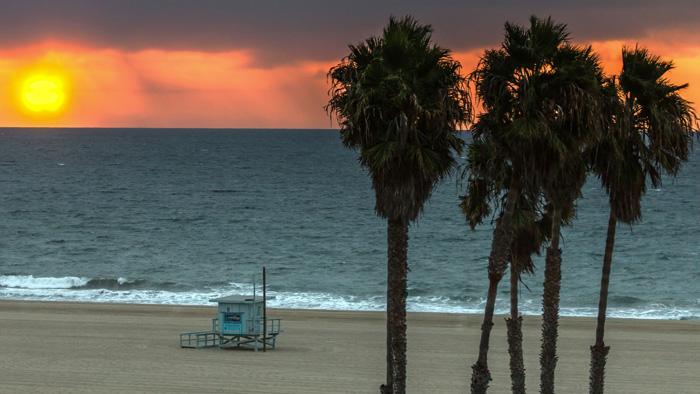 Los-Angeles-Palmy