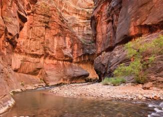 Park Narodowy Zion