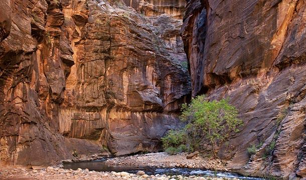 park-narodowy-zion-narrows-przewodnik-po-usa4