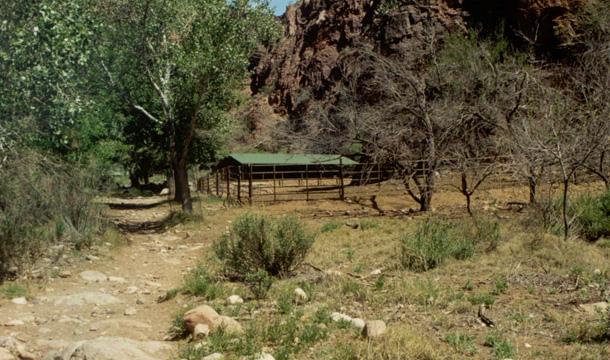kanion-kolorado-phantom-ranch-jpg