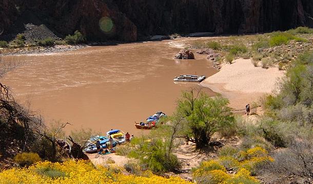 kanion-kolorado-rzeka