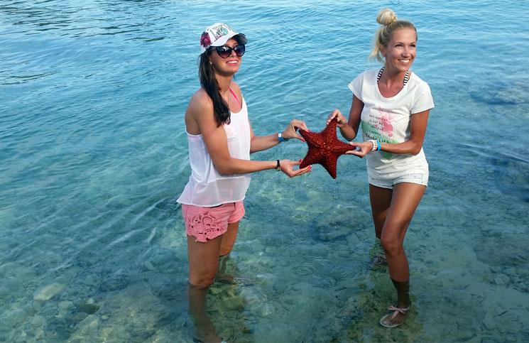 rozgwiazda-wyspy-bahama