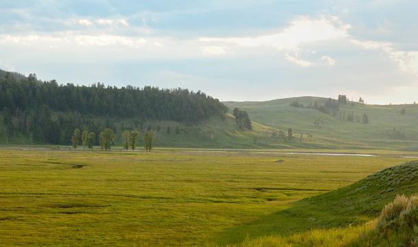 park-yellowstone-lamar-valley