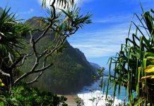 Hawaje - widok plaży