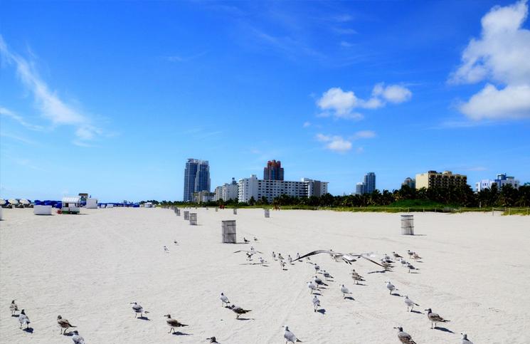 Plaża Miami Beach na Florydzie