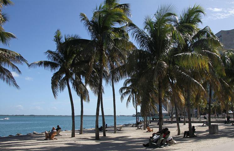 Miami-park-na-plazy