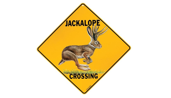 Jackalope-crossing