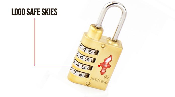 Logo-safe-skies-zamkniecie