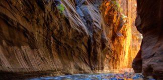 Park-Narodowy-Zion-Szlak-Narrows-