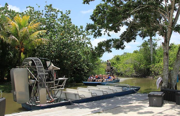 Floryda Bagna i Aligatory