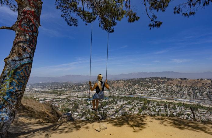 Los Angeles huśtawka drzewo