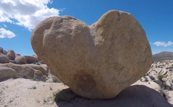 Heart Rock Joshua Tree