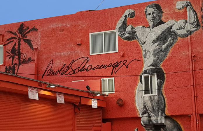 Mural Schwarzenegger Venice Beach California
