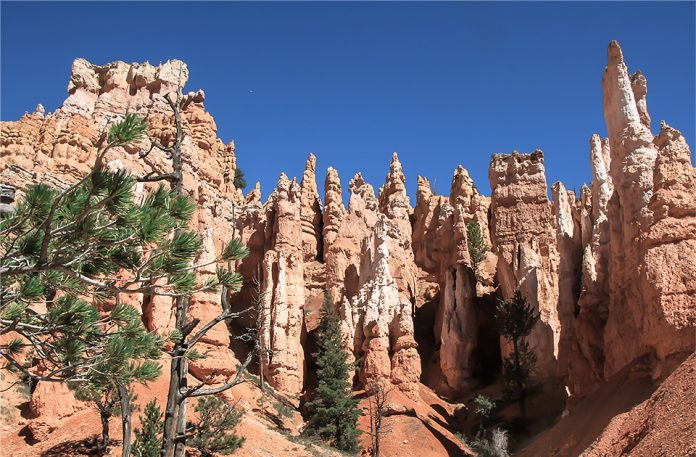 Szlak-Queens-Garden-Bryce-Canyon
